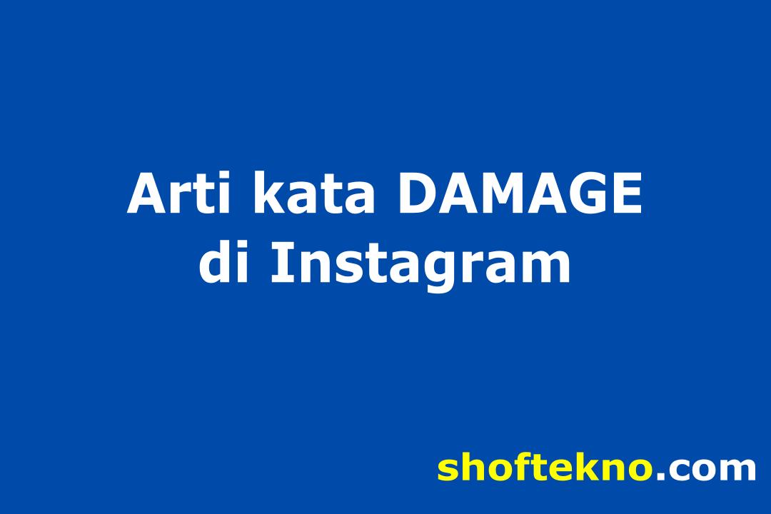 arti damage di instagram