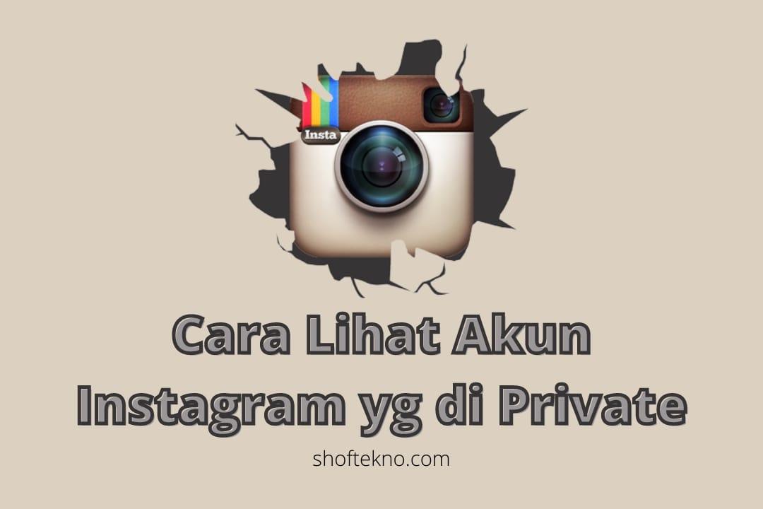 Privateinstaviewer APK